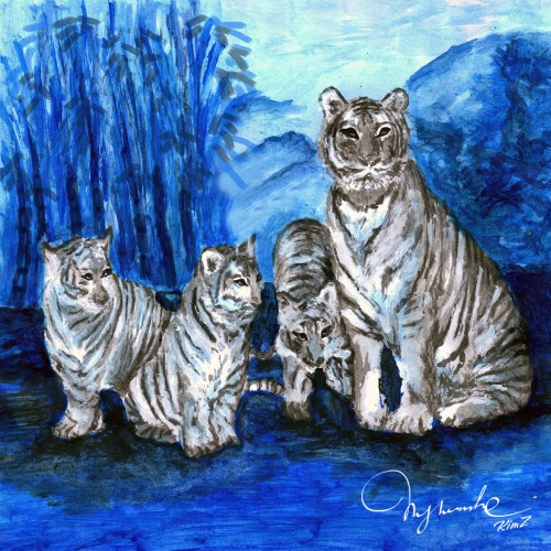 Tiger family - for school illustration of a customer