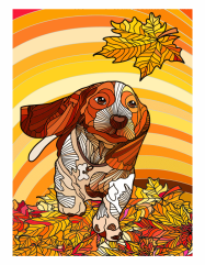 beagle__color__V3