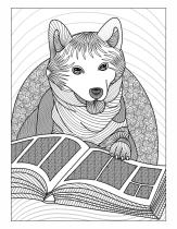 dog_reading_2