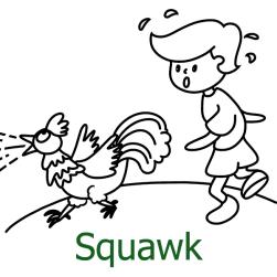 Squawk V2